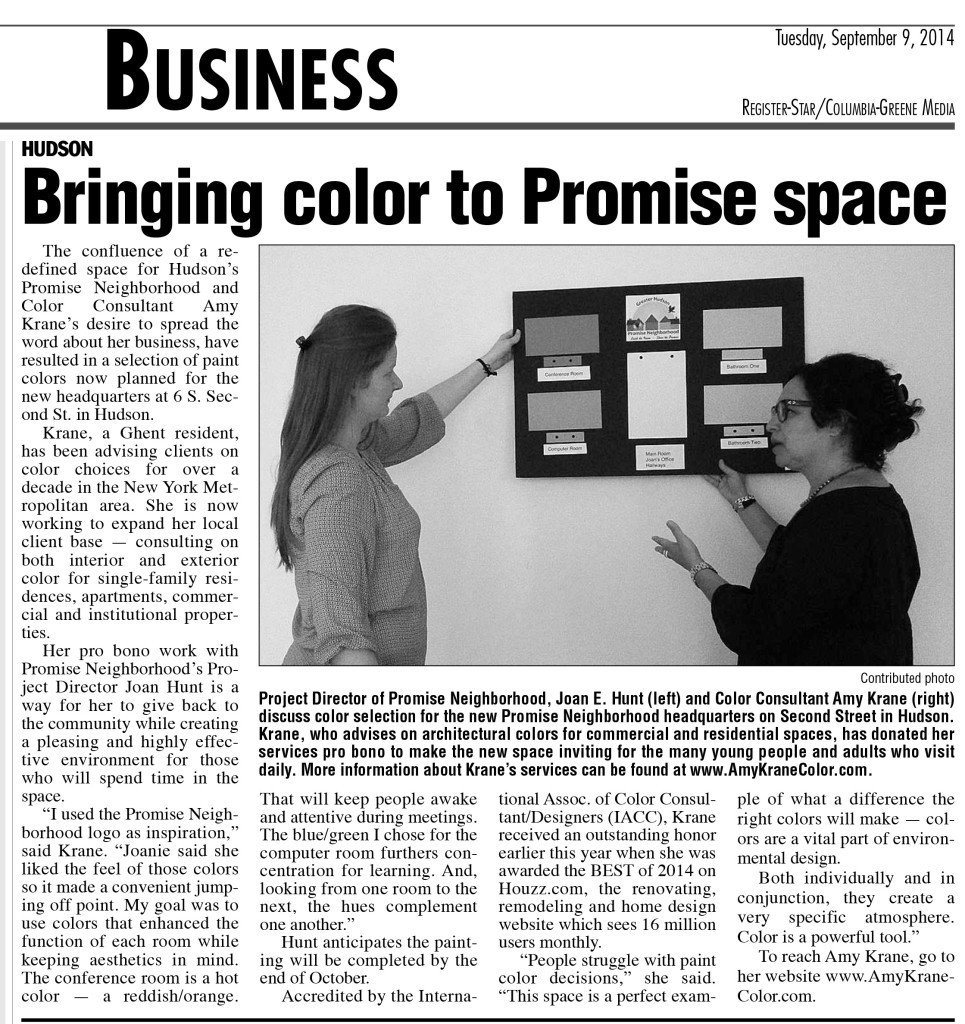 Amy Krane submitting her color plan for PROMISE NEIGHBORHOOD, Hudson, NY